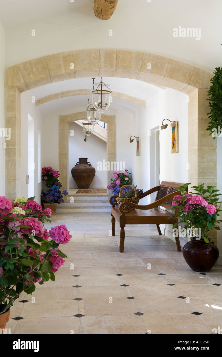 Houseplants and wooden bench in tiled hallway - Stock Image
