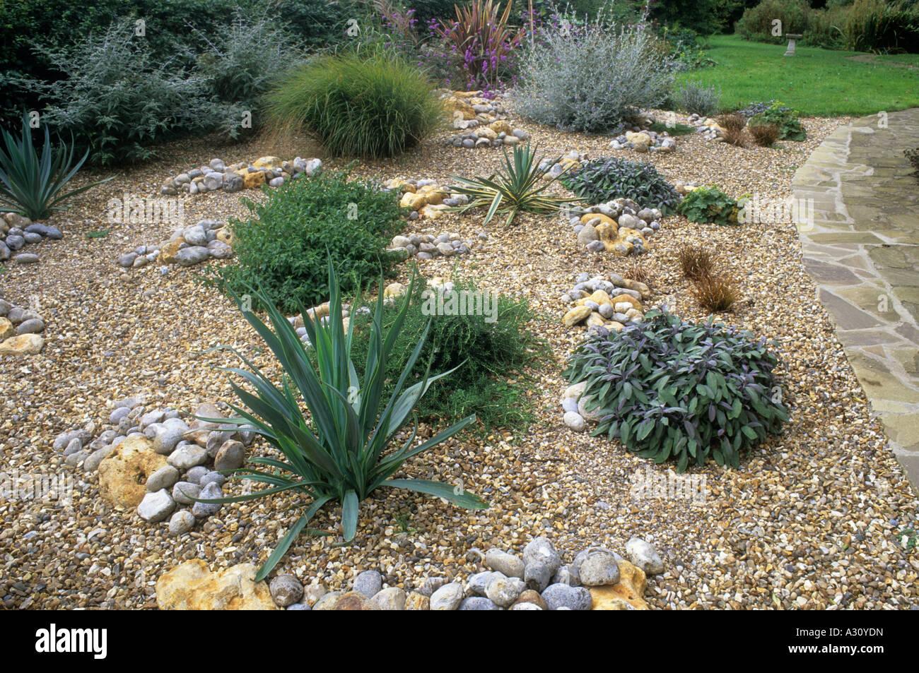 Superieur Gravel Garden Path Lawn Stones Pebbles Drought Tolerant Plants Initial  Planting In New Garden