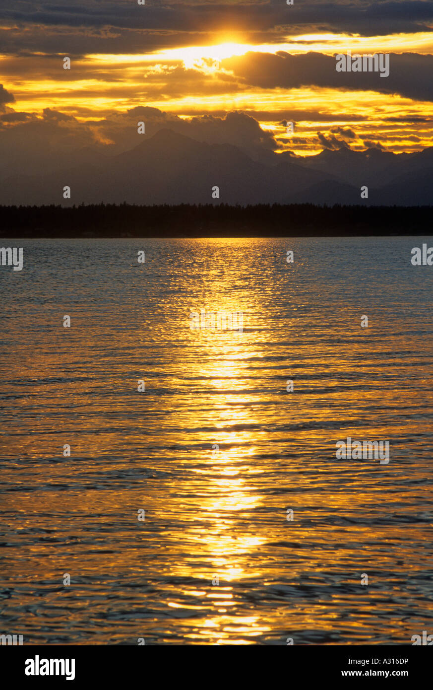 Sunset over Puget Sound and the Olympic Mountain Range at Golden ...