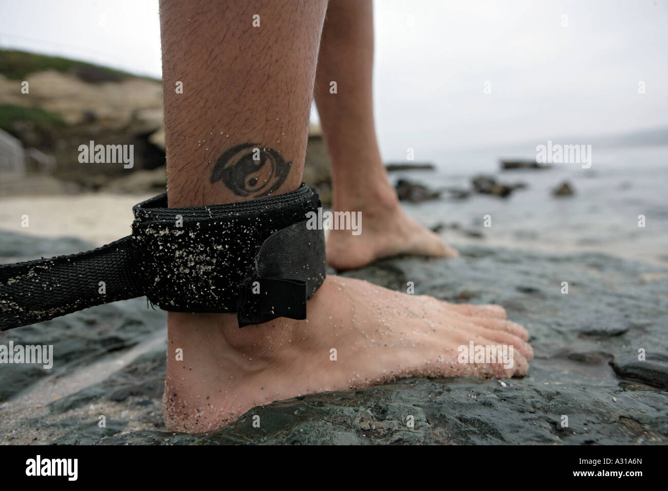 Safety strap on surfer's leg - Stock Image