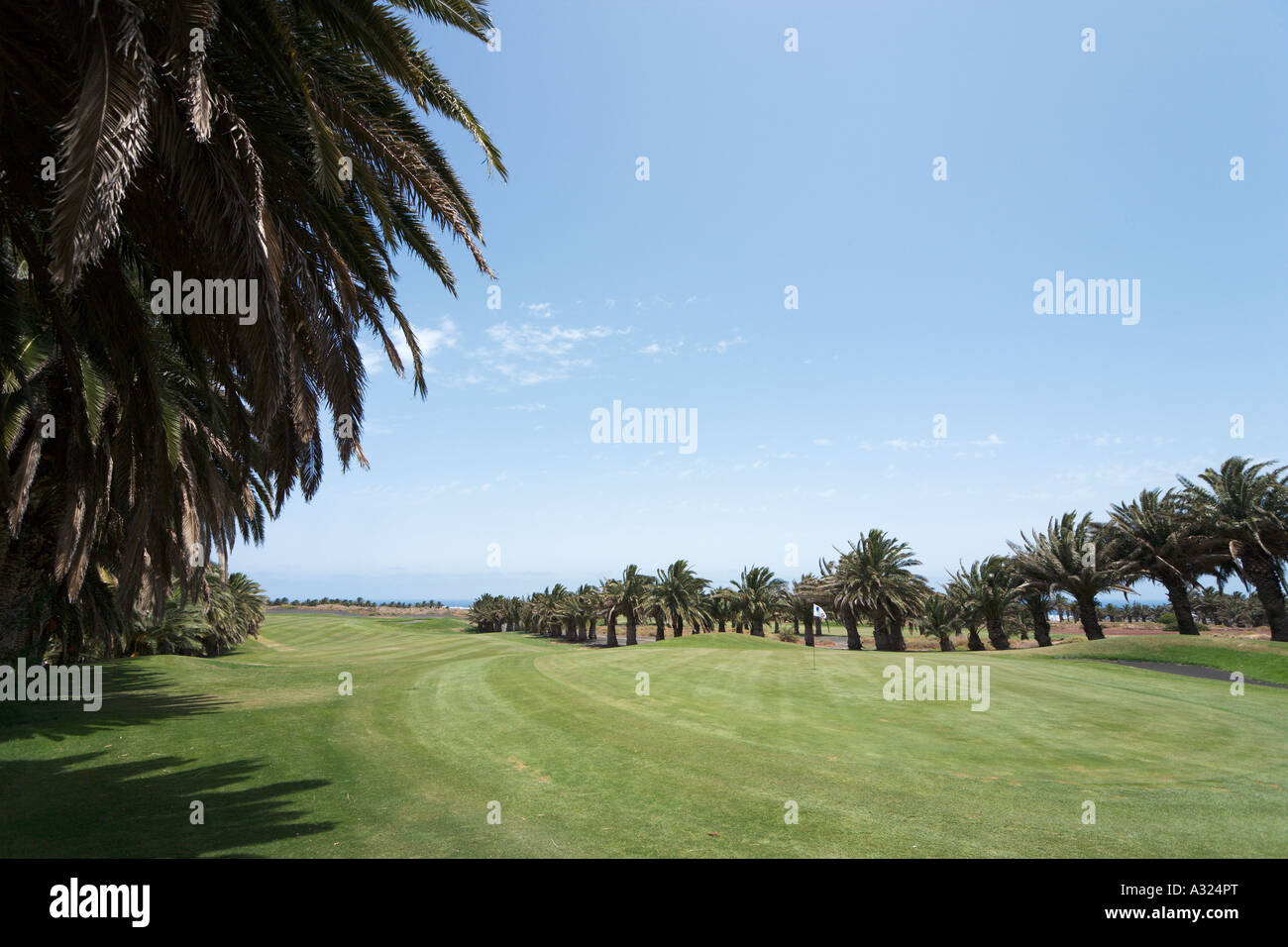 Ninth Green of the Golf Club at Costa Teguise, Lanzarote, Canary Islands, Spain - Stock Image