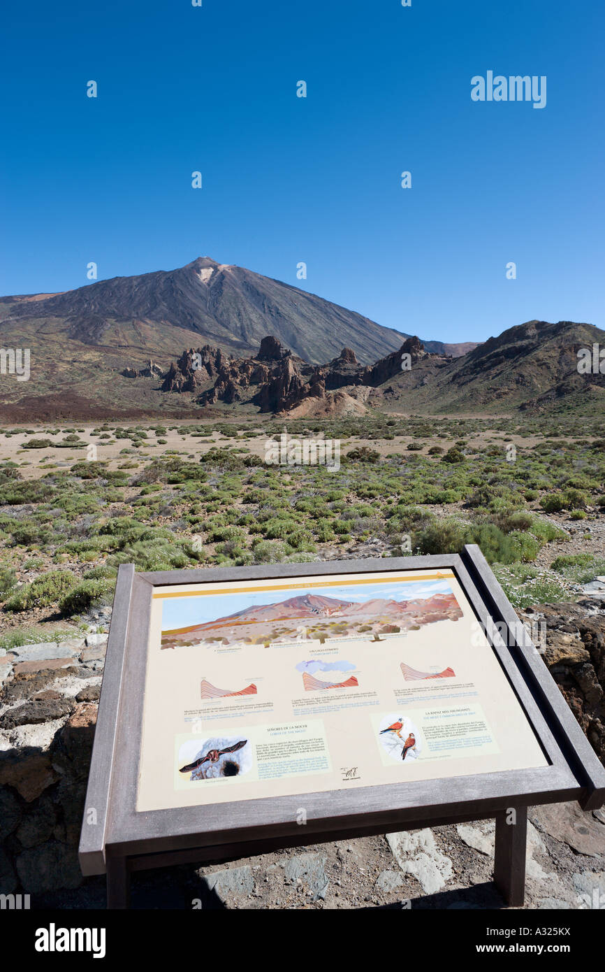 Llano de Ucanca, Las Canadas del Teide, Tenerife, Canary Islands, Spain - Stock Image