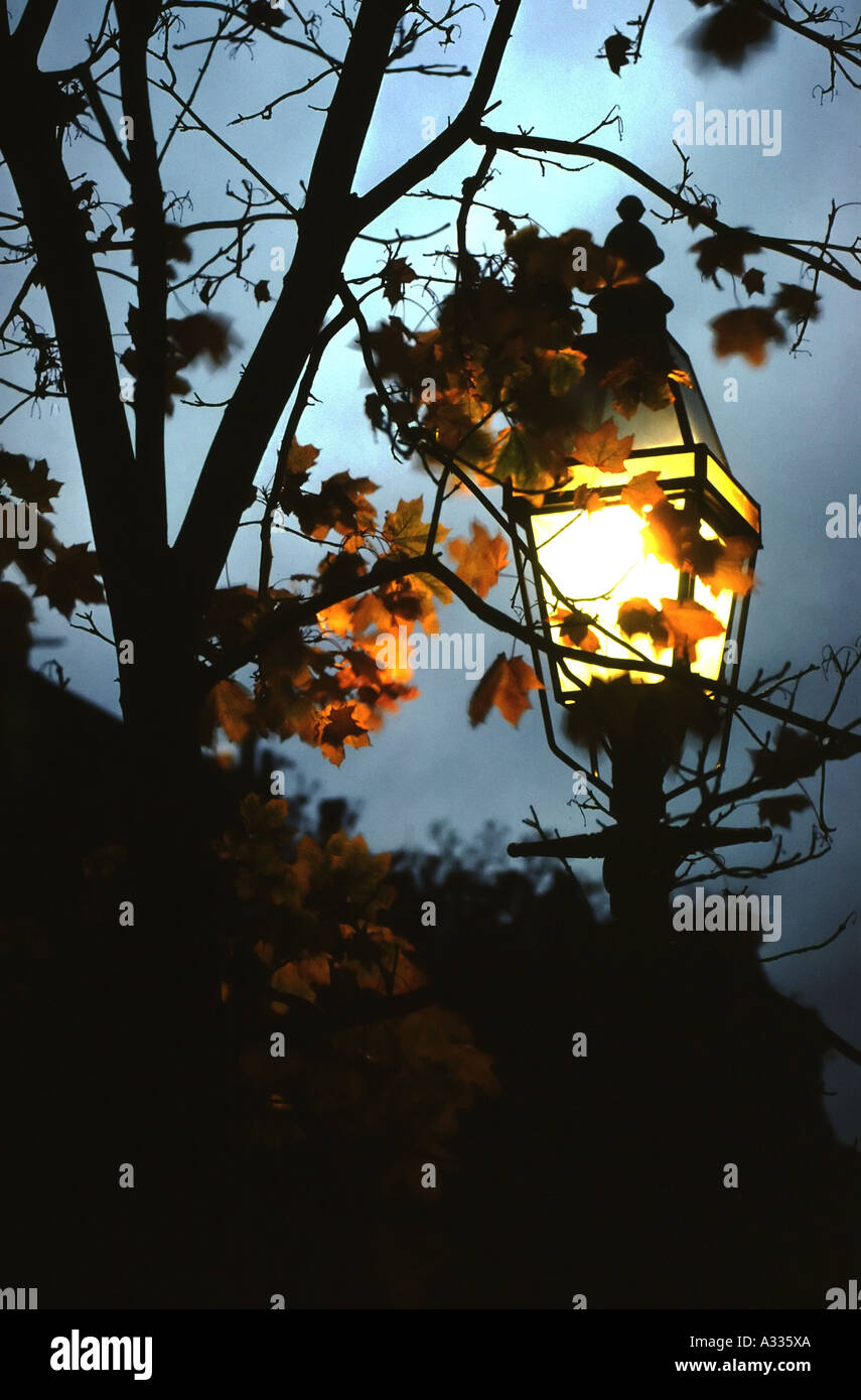Autumn leaves frame a gas streetlight in the Back Bay neighborhood of Boston Massachusetts USA - Stock Image