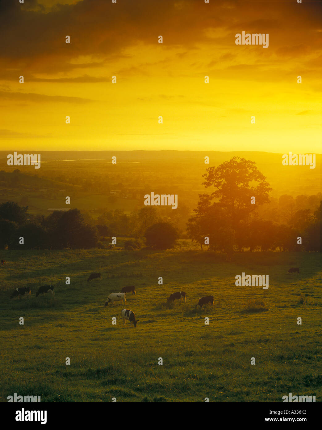 The Severn Vale viewed from the Cotswold scarp at  Edge, Gloucestershire - Stock Image