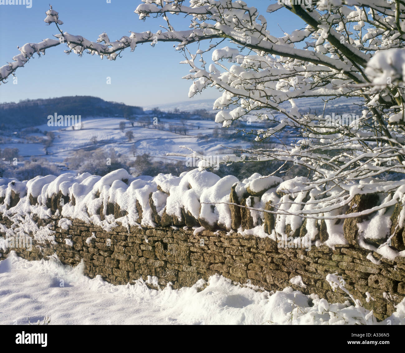 Haresfield Hill in the Cotswolds viewed  from Edge, Gloucestershire in snow - Stock Image