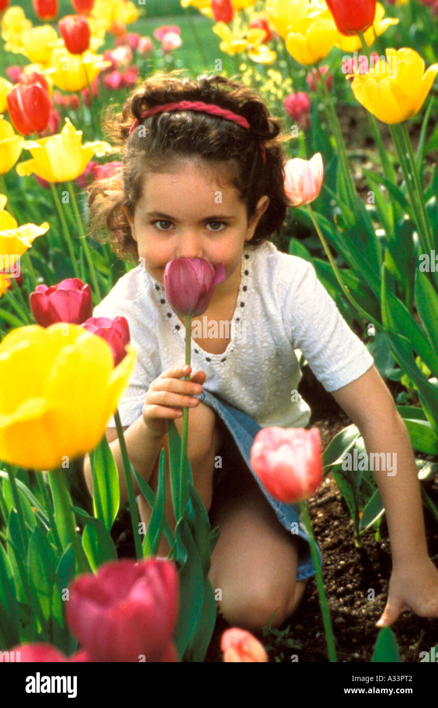 Girl with tulips M 842 - Stock Image