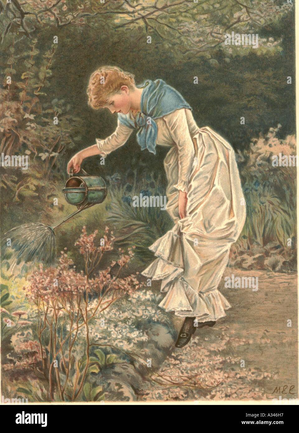 Gardener Illustration Stock Photos & Gardener Illustration Stock ...