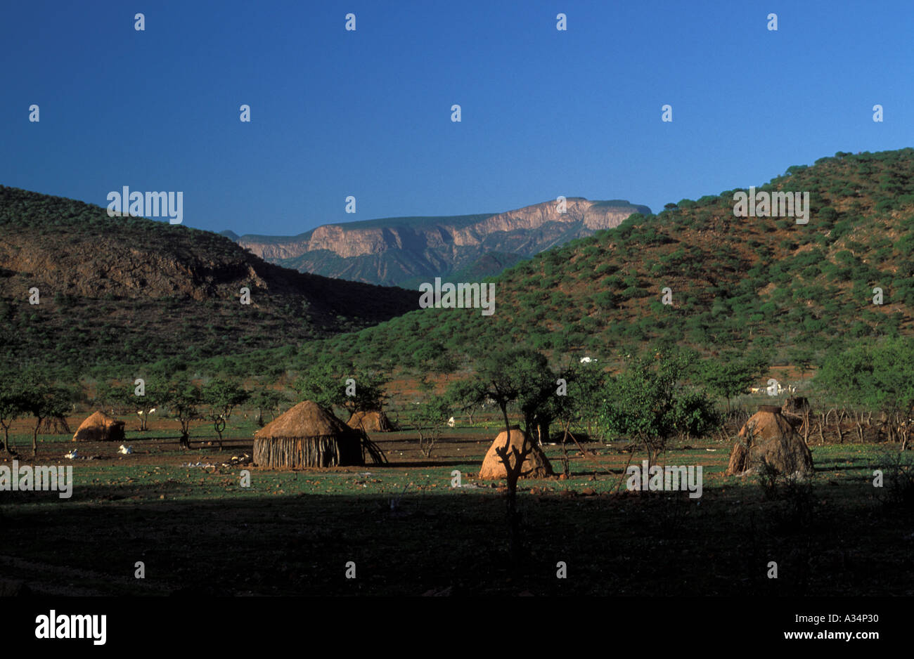 Huts inside Kraal of Himba Ovahimba tibe people nocmadic rainy season Kaokoveld Namibia Africa - Stock Image