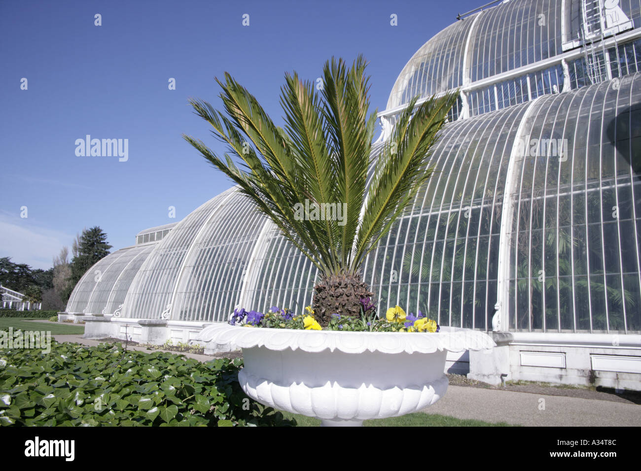 The Royal Botanic Gardens Kew in the spring the Palm House - Stock Image