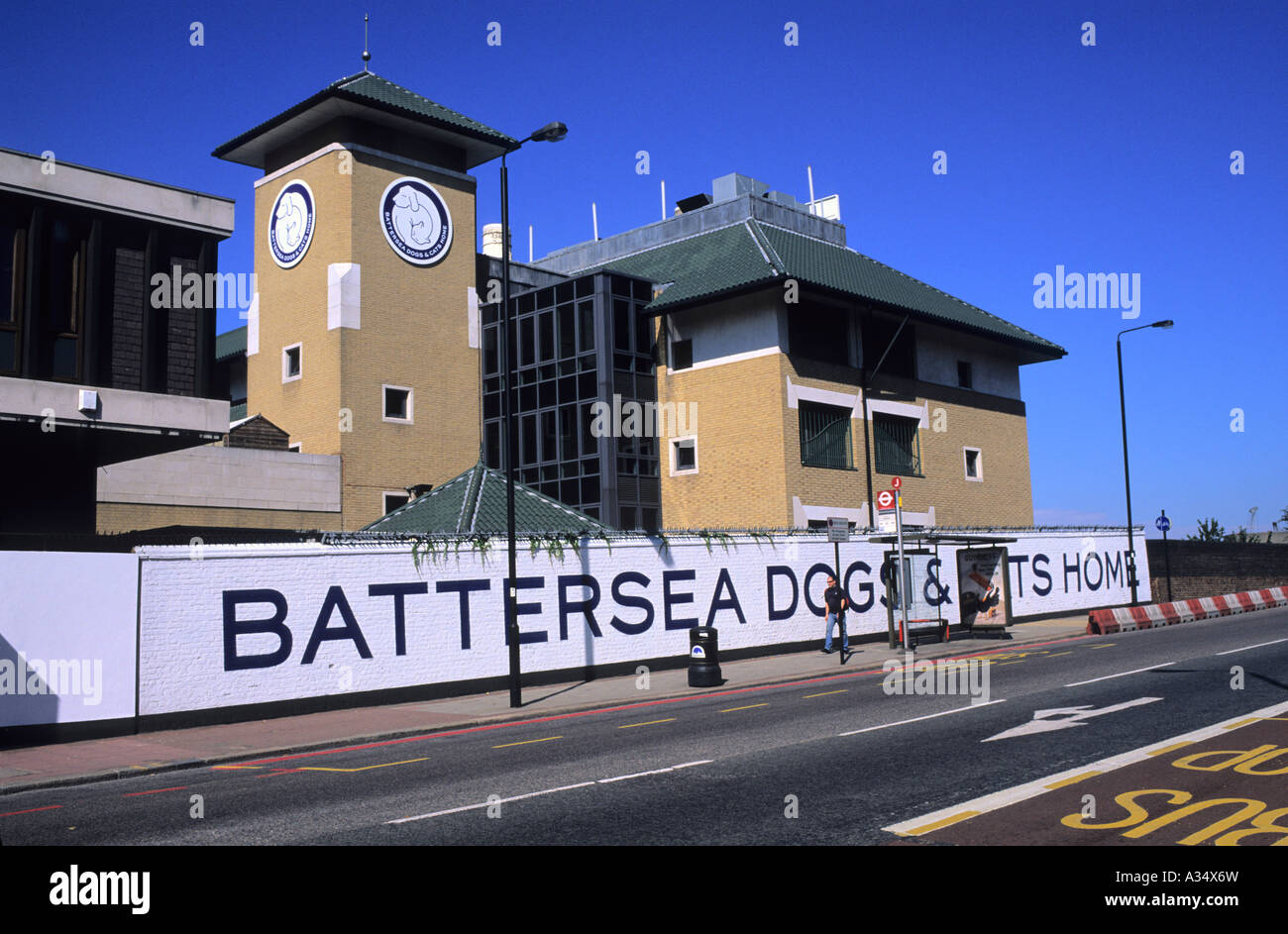 Battersea Dogs And Cats Home London Marathon