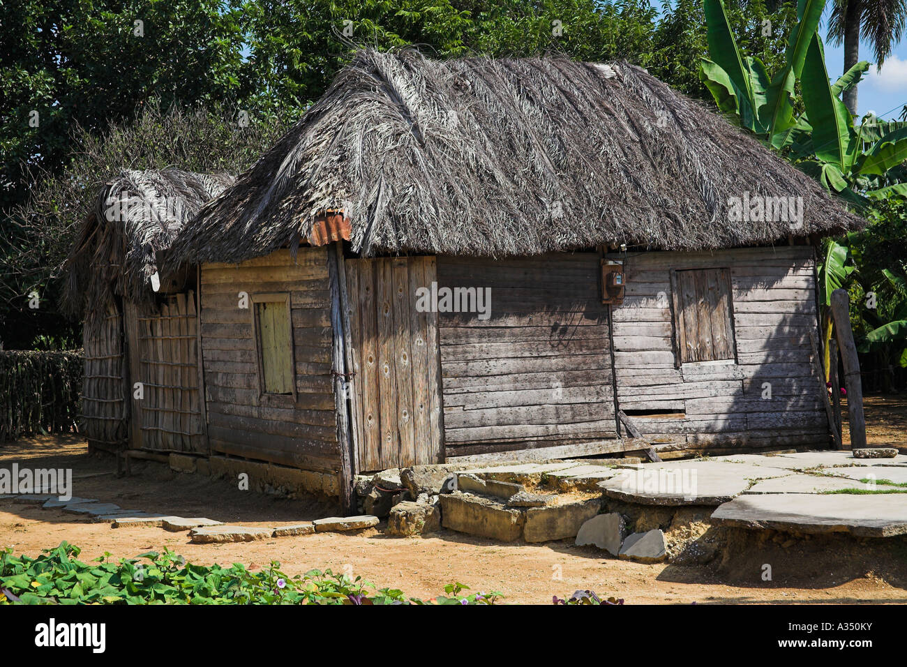 House constructed from wood with a palm tree leaf roof, Camera Village, near Santiago de Cuba, Cuba - Stock Image