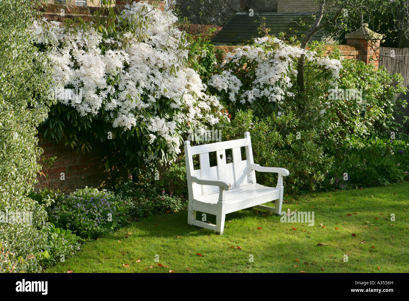 Awesome White Bench In English Summer Garden Stock Photo 10673560 Ncnpc Chair Design For Home Ncnpcorg