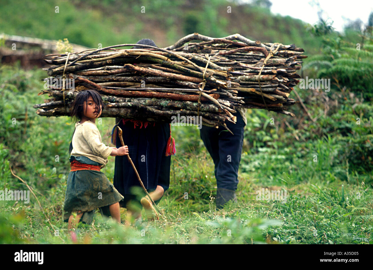 Family coming back from gathering firewood in the Lacandona Forrest Mexico - Stock Image