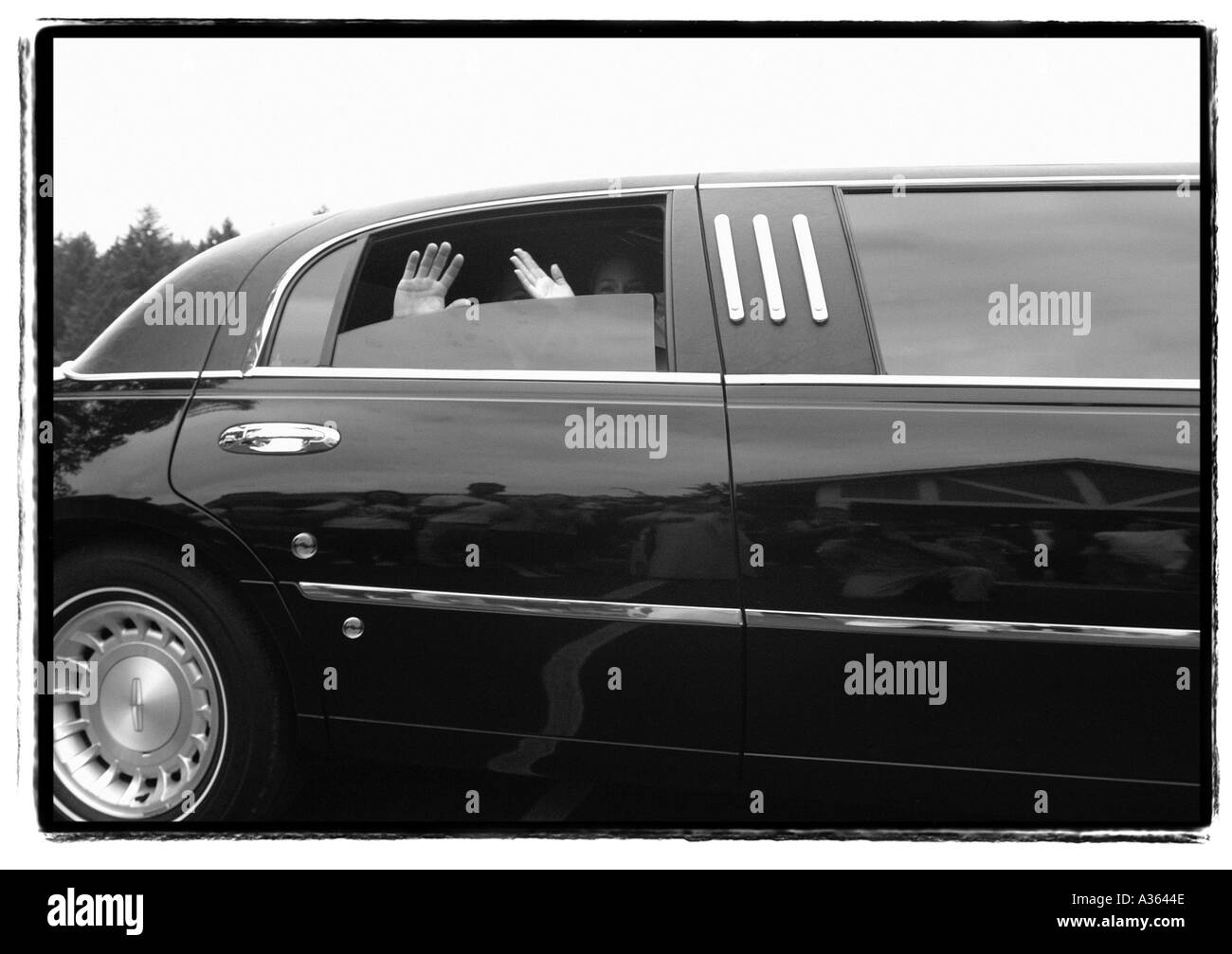 Bride and groom wave as limo departs the wedding - Stock Image