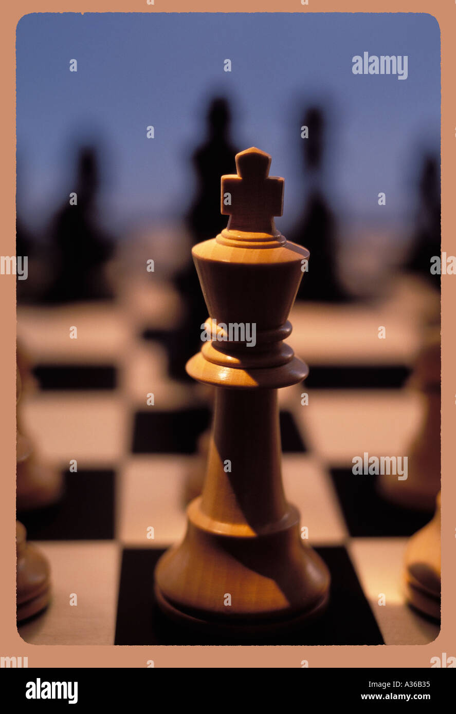 White king on chessboard - Stock Image