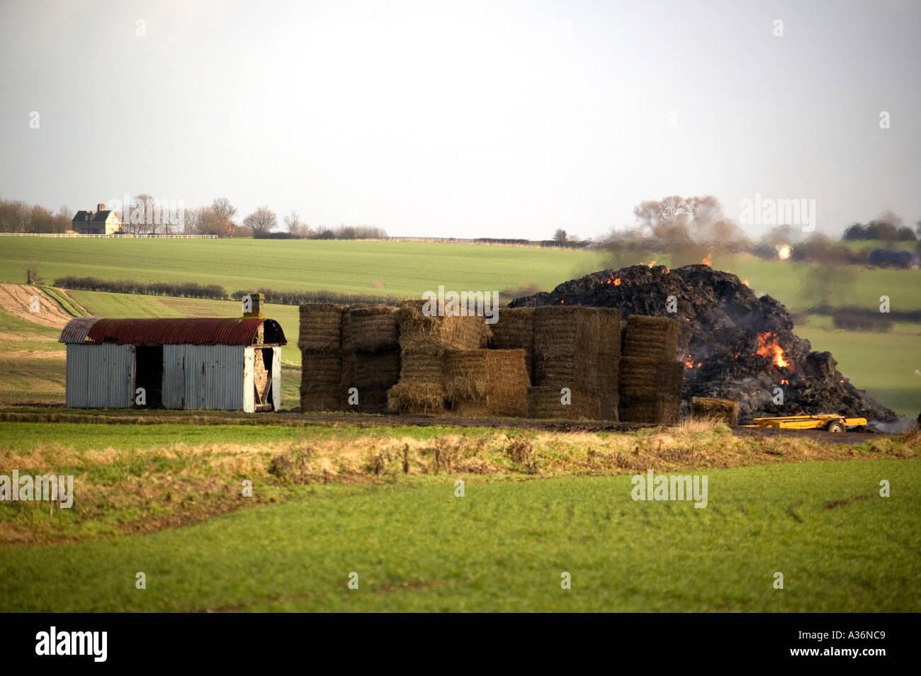 Arson Straw bales.Cambs - Stock Image