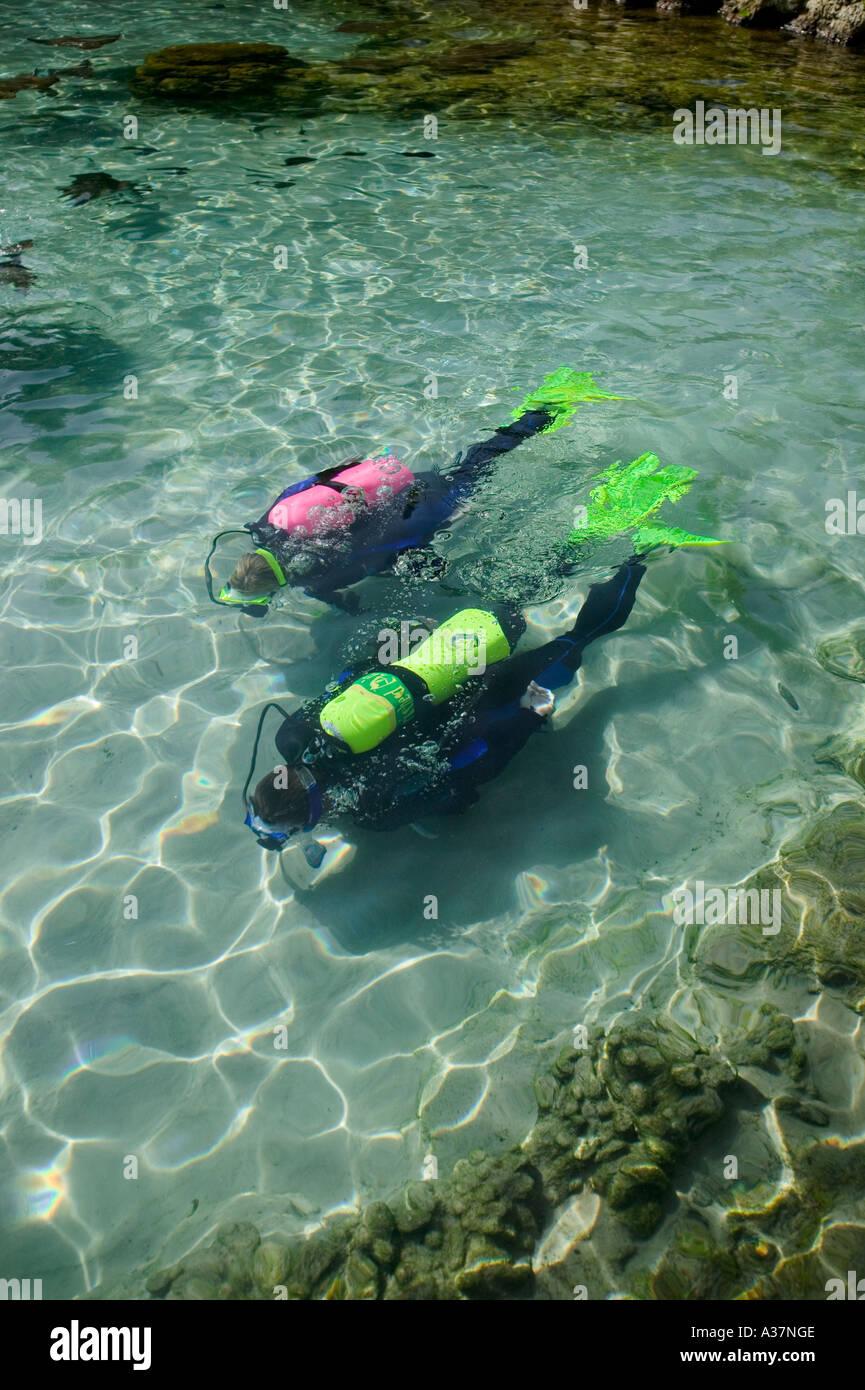 Couple in scuba gear in stingray pool Discovery Cove Orlando FL Florida - Stock Image