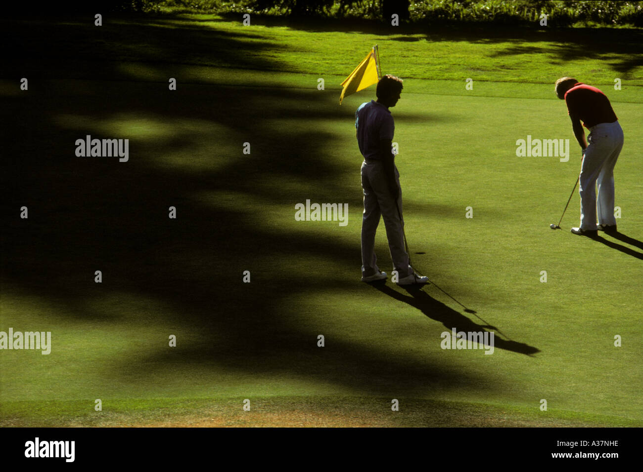 Late afternoon shadows stretch across a putting green as two golfers continue their game - Stock Image