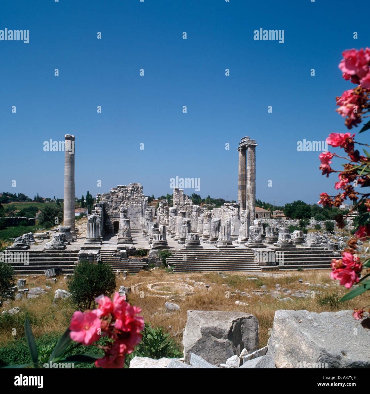 Temple of Apollo, Didim, Altinkum, Turkey - Stock Image