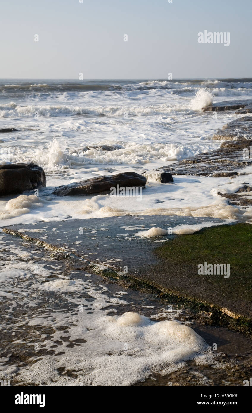 dirty looking sea foam gathered around wet rocks on a beach Stock Photo