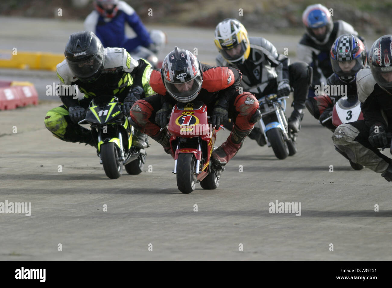 Senior minibike competitors crouched down heading for the line at demonstration Motorcycle and motorsport show - Stock Image
