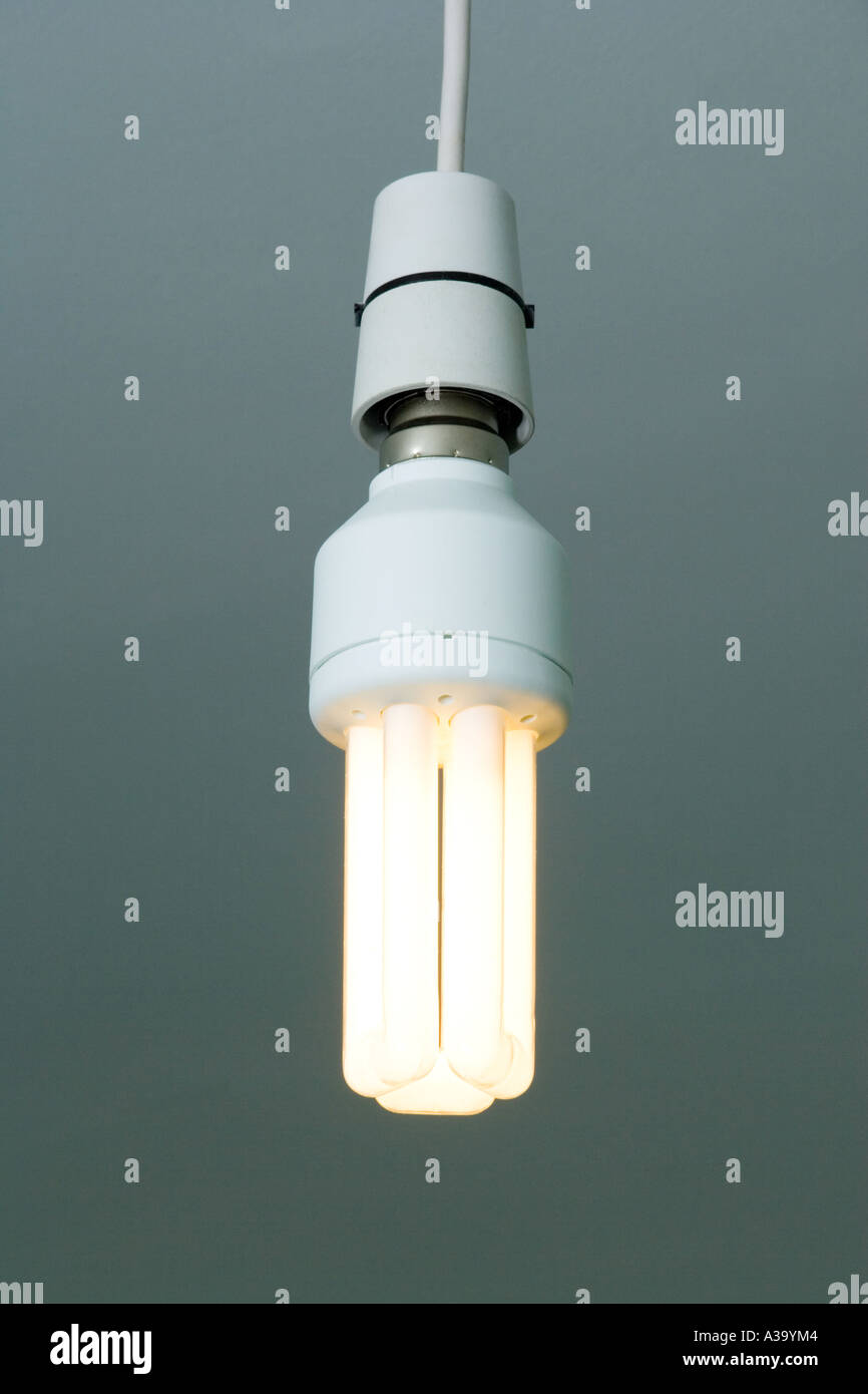 low wattage fluorescent light bulb & low wattage fluorescent light bulb Stock Photo: 6124931 - Alamy