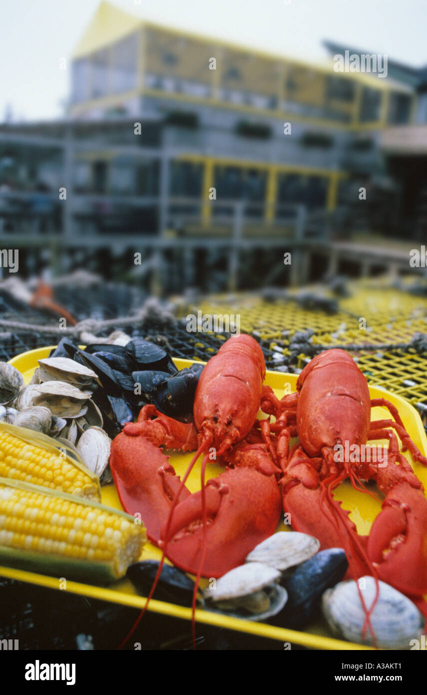 Lobster dinner on the coast of Maine - Stock Image