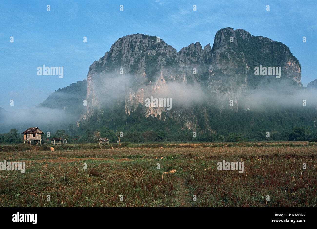 Mist shrouded limestone outcrops amidst rural fields Vang Vieng Laos - Stock Image