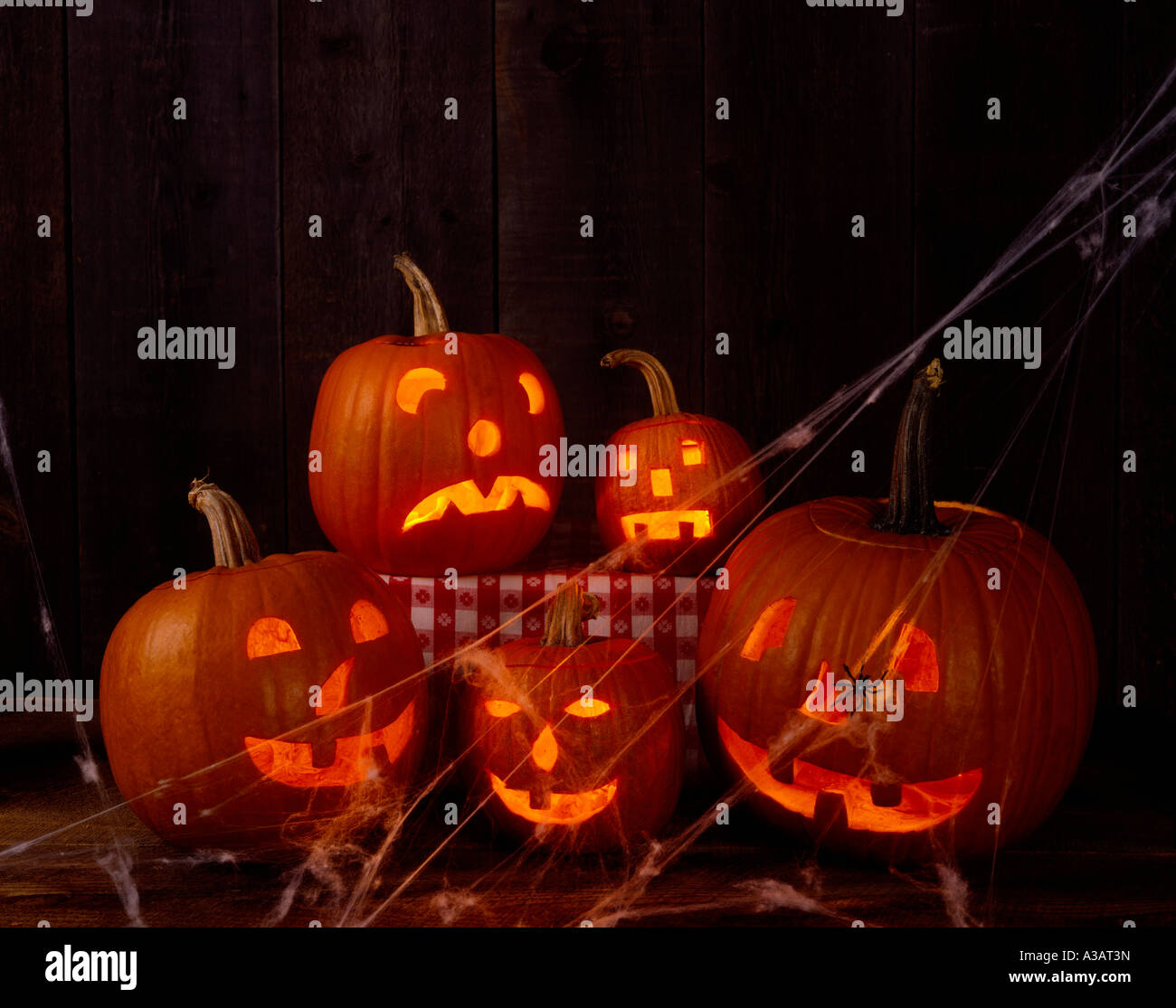 Five scary Jack O Lanterns glow in a darkened room - Stock Image