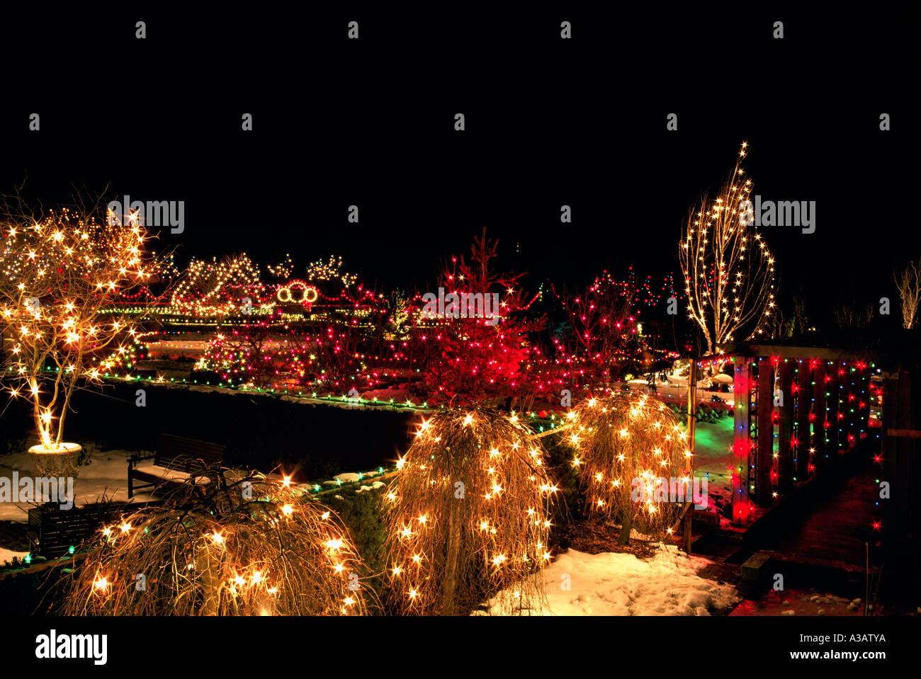 traditional christmas lights on trees vandusen botanical garden vancouver A3ATYA - Van Dusen Gardens Christmas Lights 2019