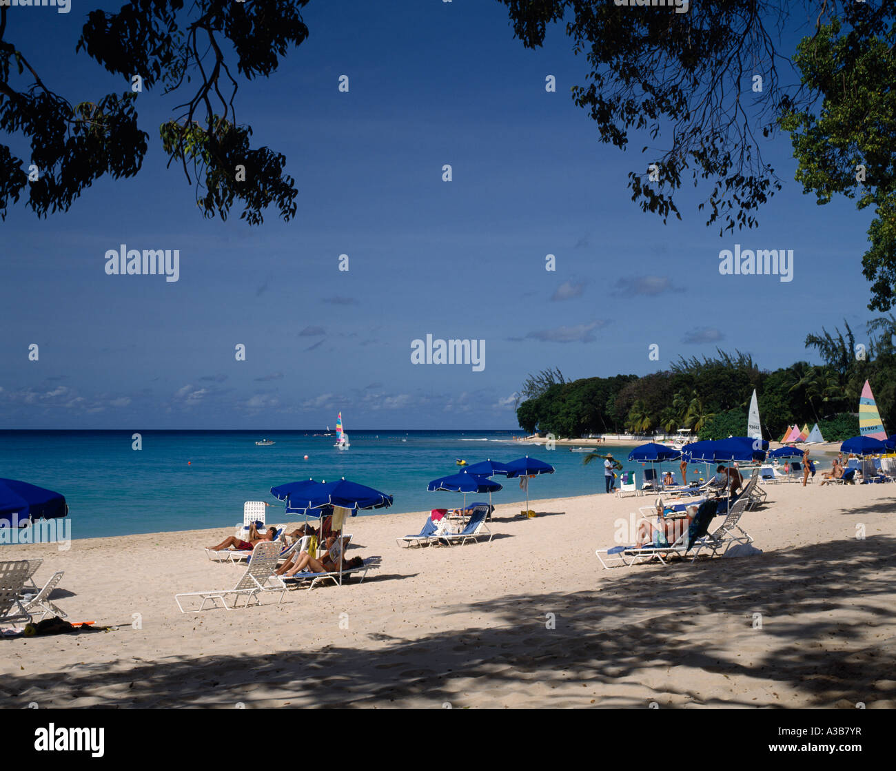 BARBADOS Caribbean West Indies St James Sandy Lane Beach sunbathers on sun loungers under blue umbrellas with overhanging - Stock Image