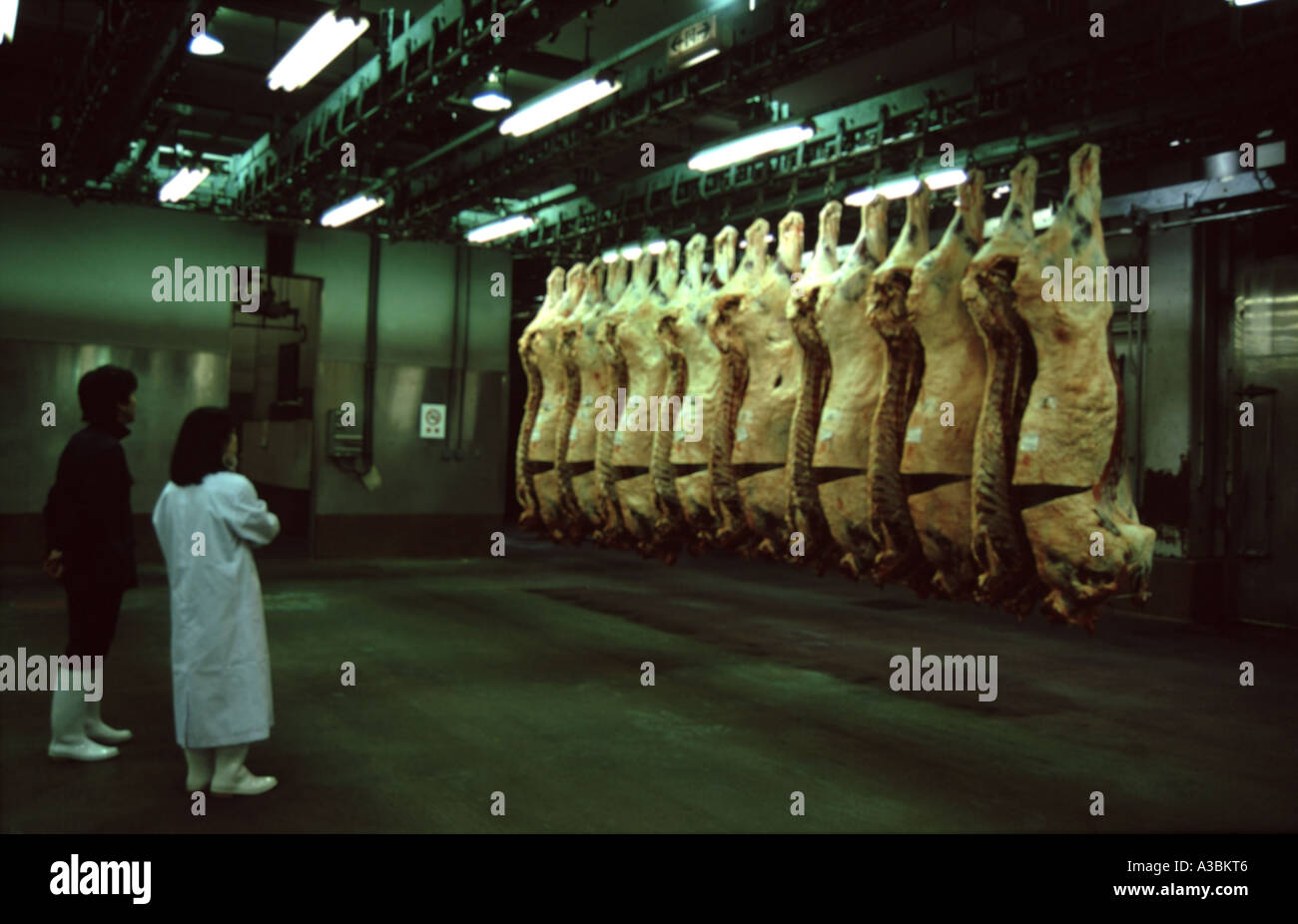 A slaughterhouse in Matsubara, near Osaska in Japan - Stock Image