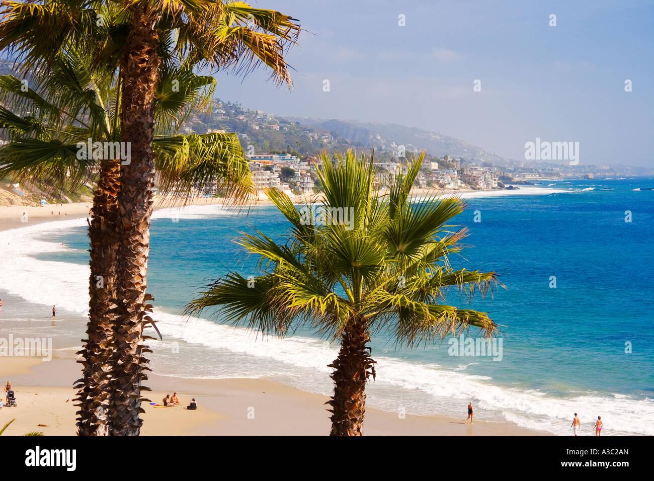 Palm Trees Frame Main Beach At Heisler Park In Laguna California USA