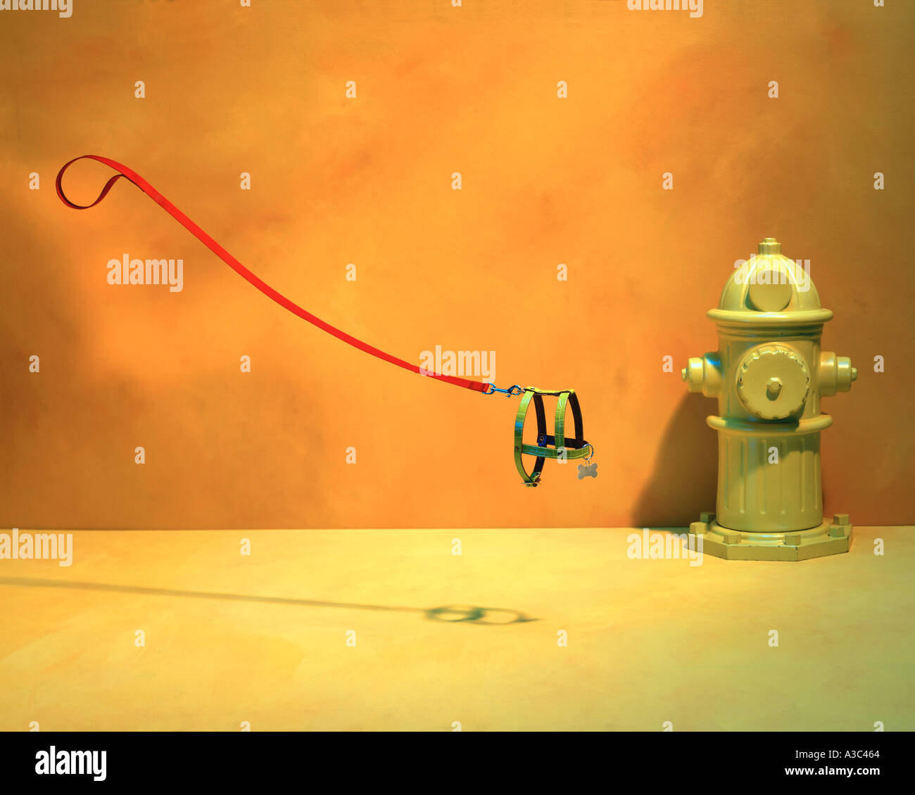 Invisible dog with leash and fire hydrant by Pete McArthur 2007 - Stock Image
