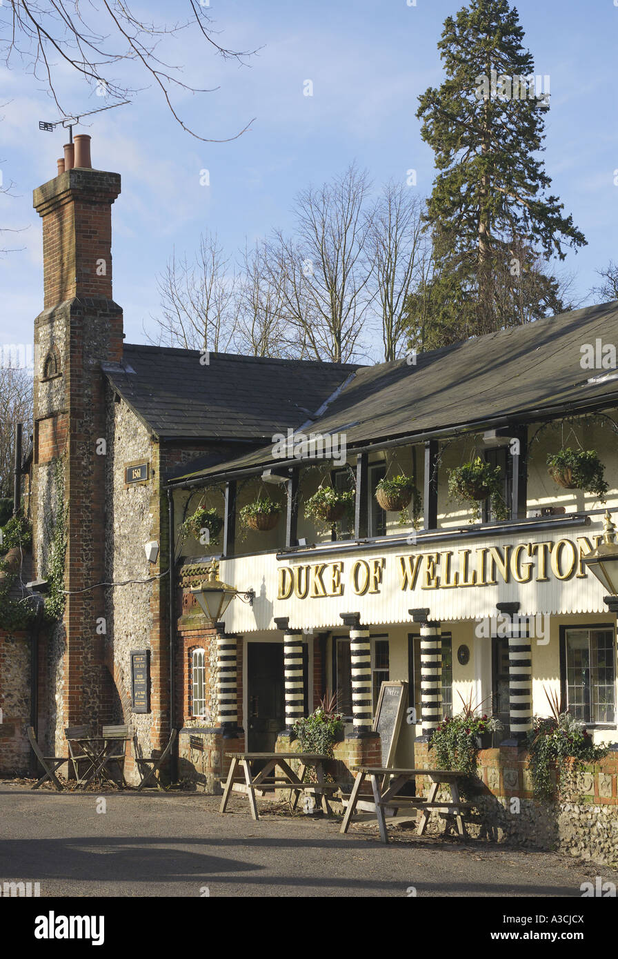 the Duke of Wellington an old coaching inn in East Horsley Surrey - Stock Image