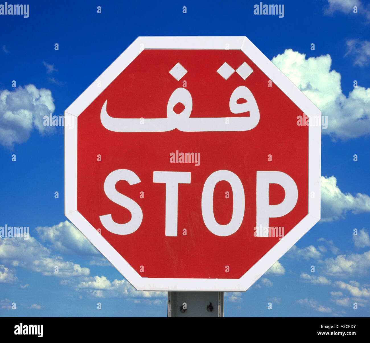 traafic sign Stop in Tunesia, Tunisia - Stock Image
