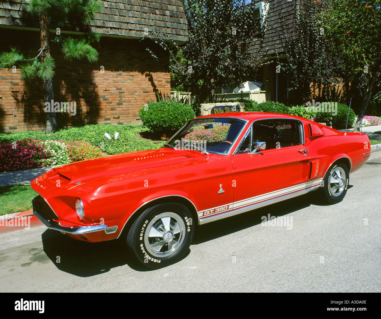 Ford Mustang Shelby Gt Stock Photos 1969 350 Image