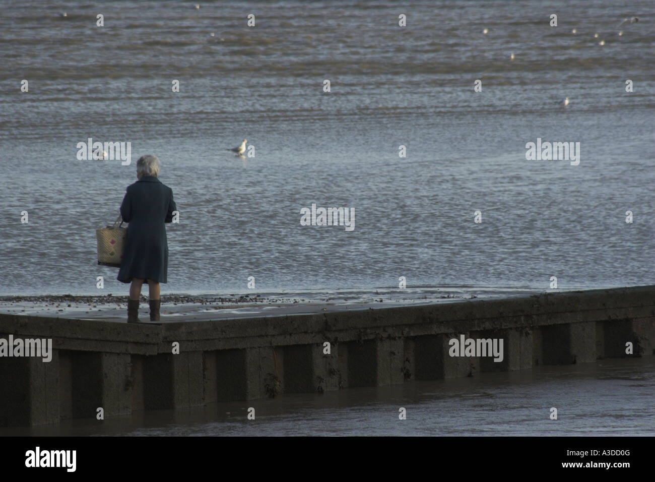 An elderly lady stands looking out to sea. Stock Photo