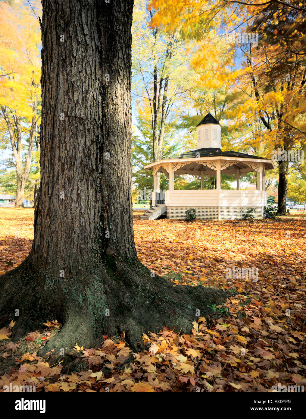 Bandstand & Maple Tree In Historic Town Of Waterford, Pennsylvania (Erie County), - Stock Image