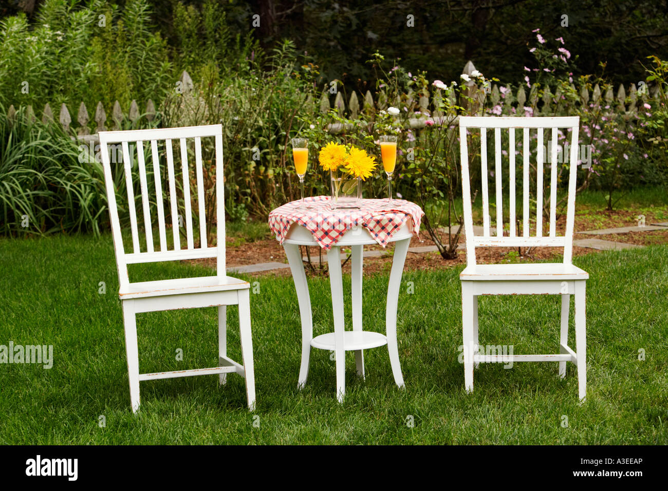 Two chairs and a table in a garden & Two chairs and a table in a garden Stock Photo: 10761309 - Alamy