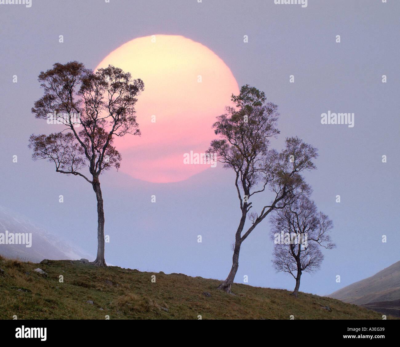 GB - SCOTLAND: Winter Sunset at Glen Lochsie - Stock Image