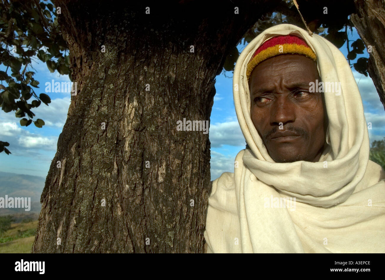 Man stands by tree NEAR CHIDA between Jima and Weka South Western Ethiopia - Stock Image