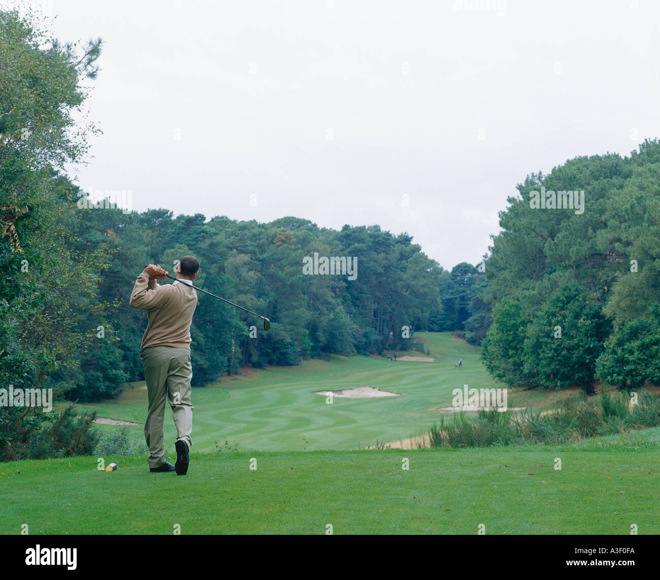 Golfer driving ball down the fairway - Stock Image