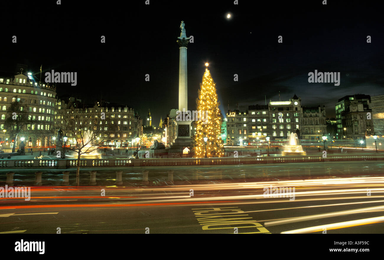 UK London Trafalgar Square Norwegian Christmas Tree Stock Photo ...