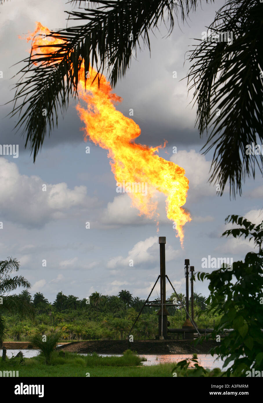 Nigeria, environmental pollution by burning off gas from the oil production in the Niger delta, Ogoniland - Stock Image