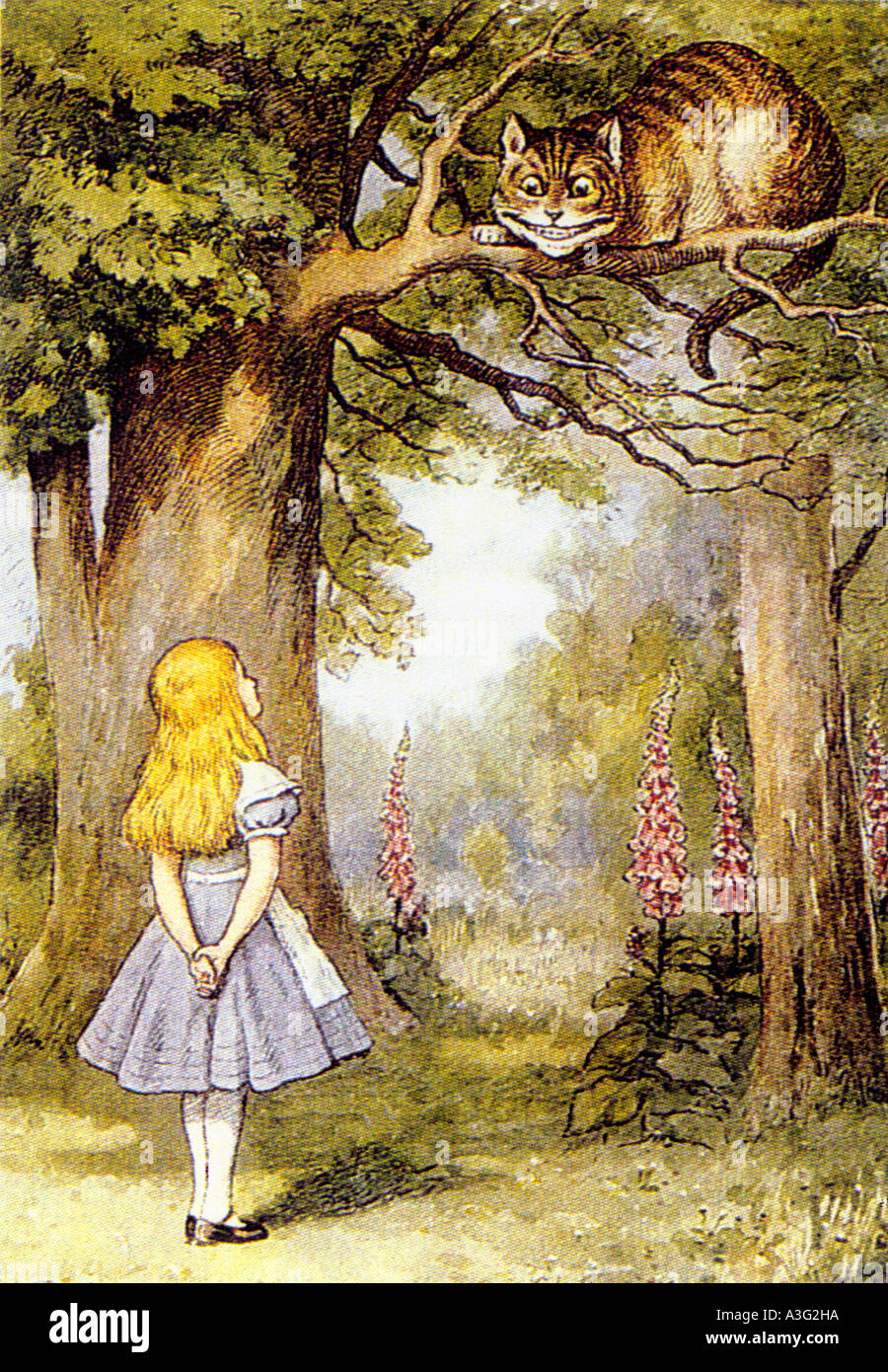 ALICE IN WONDERLAND  Illustration by Tenniel in 1907 edition of  book by Louis Carroll in which Alice meets the Cheshire Cat - Stock Image