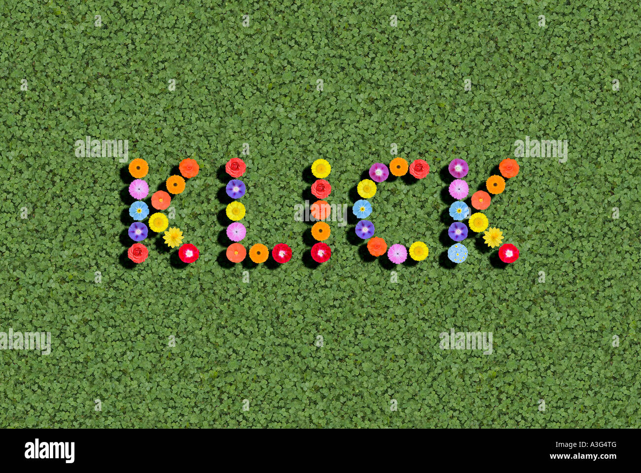 klick stock