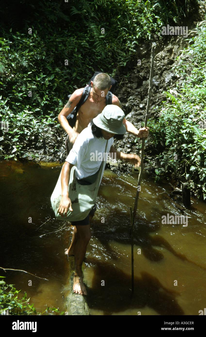 A Indonesian guide helps a Western trekker across a log bridge in the jungles of Siberut Island - Stock Image