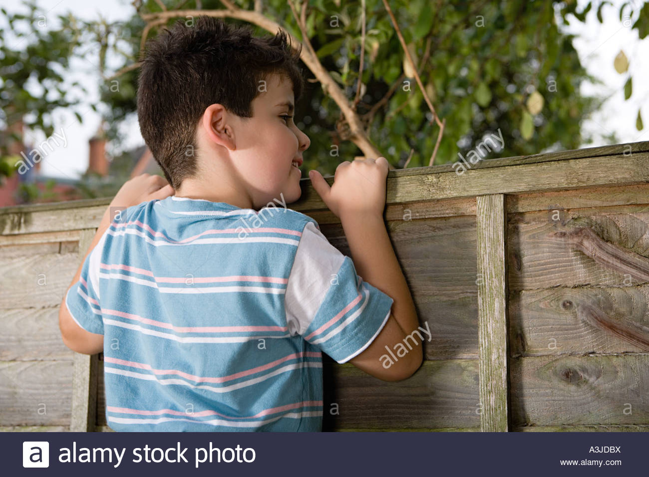 Boy looking over fence - Stock Image