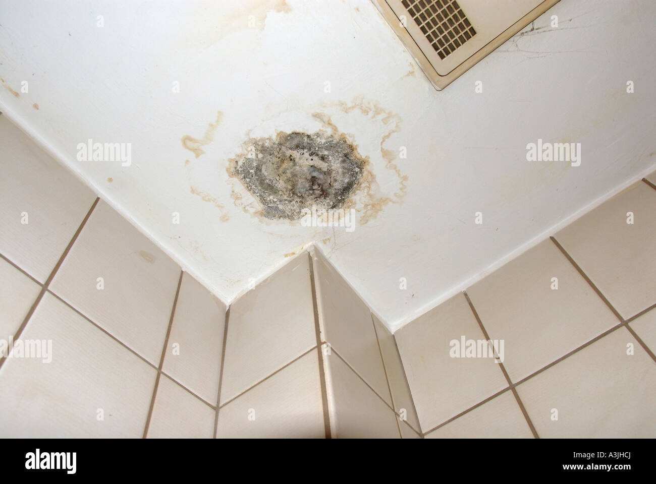 mold on the ceiling in a bathroom. - Stock Image
